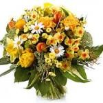 kwiaty Patrycja