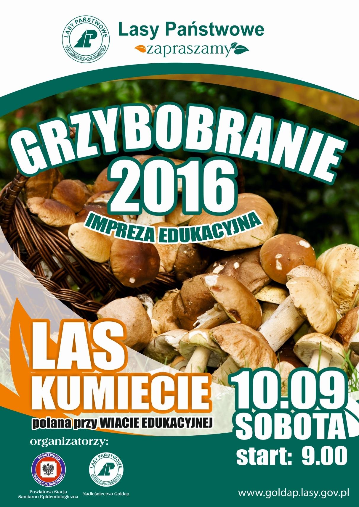 grzybobranie-2016m